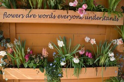 flowers are words everyone understands - positive sentence for life, good vibes, optimistic sentence on vintage designed wooden flower box stand with unique colorful flowers