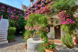 Flowers at Cordoba´s courtyards, Spain