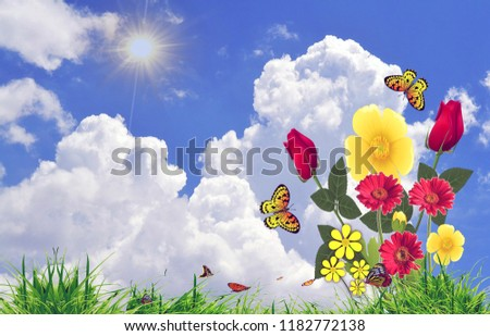 Stock Photo flowers background image.The flowers beautifully arranged to form a decoration with sky and grass as well as with sunlight.This nature photo can be used as a background of android or desktop.
