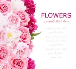 Flowers background isolated on white with sample text. Peony, roses and tulips