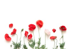 Flowers composition. Border made of beautiful red and white poppies on a white background. Greeting card. Flat lay, top view, copy space.