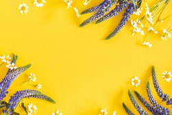 Flowers composition. Chamomile flowers on yellow background. Spring, summer concept. Flat lay, top view, copy space