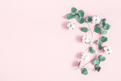 Flowers composition. Eucalyptus leaves and cotton flowers on pastel pink background. Flat lay, top view, copy space