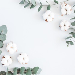 Flowers composition. Frame made of cotton flowers and eucalyptus branches on pastel blue background. Flat lay, top view, square, copy space