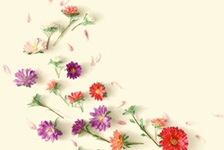Flowers composition.  Frame made of fresh fall flowers on light pastel yellow  background. Flat lay, top view, copy space