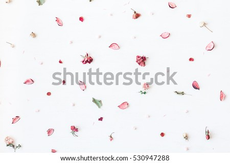 Flowers composition. Frame made of pink dried flowers and leaves on white background. Top view, flat lay