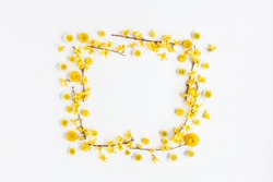 Flowers composition. Frame made of various yellow flowers on white background. Easter, spring, summer concept. Flat lay, top view, copy space