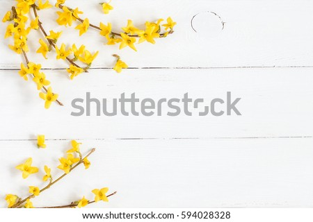 Flowers composition. Frame made of yellow flowers on wooden white background. Easter, spring, summer concept. Flat lay, top view. #594028328