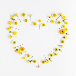 Flowers composition. Heart symbol made of various yellow flowers on white background. Flat lay, top view