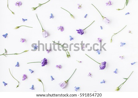 Flowers composition. Pattern made of various colorful flowers on white background. Spring, summer concept. Flat lay, top view