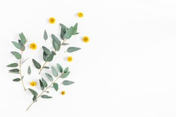 Flowers composition. Pattern made of yellow flowers and eucalyptus branches on white background. Flat lay, top view, copy space