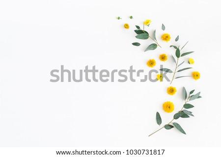 Photo of Flowers composition. Pattern made of yellow flowers and eucalyptus leaves on white background. Flat lay, top view, copy space