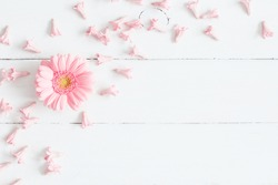 Flowers composition. Pink flowers on white wooden background. Flat lay, top view.