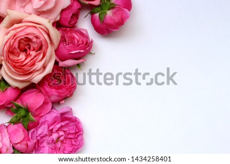 Flowers composition. Rose flower petals on white background. Valentine's Day, Mother's Day concept. Flat lay, top view, copy space.