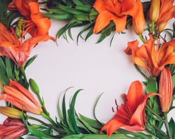 Flowers composition. Wreath frame made of orange lily flowers on white background. Art, exotic, summer concept. Top view, flat lay. Selective focus, space for text