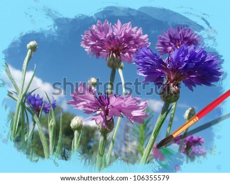Flowers cornflowers in a watercolor frame
