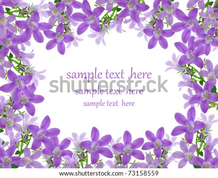 Flowers frame, with room for text