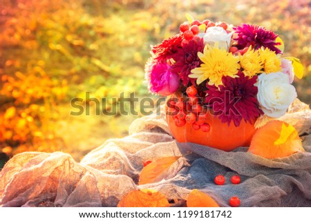 Flowers in a pumpkin. Bright autumn background with place for text. Colorful autumn card. Pumpkin with fresh flowers. #1199181742