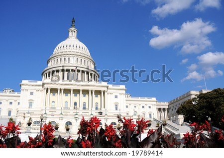 Flowers in front of the U.S. Capitol, where the Senate and House of Representatives meet