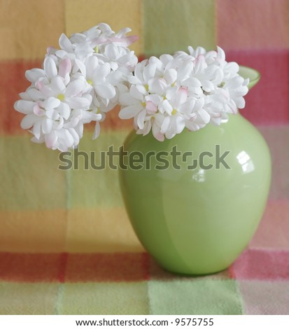 flowers in green vase on colorful background