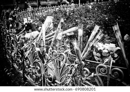Flowers in homage against terrorism, detail in favor of the victims of terrorism