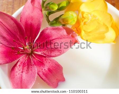 flowers in milk