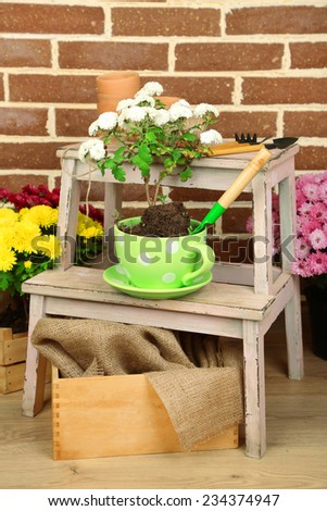 Flowers in pot on stepladder, potting soil, watering can and plants on bricks background. Planting flowers concept