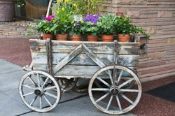 Flowers in terracotta pots for sale in old wooden wagon