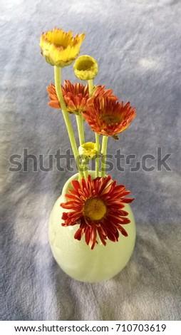 flowers in vase #710703619