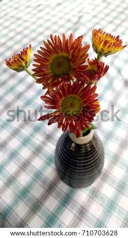 flowers in vase #710703628