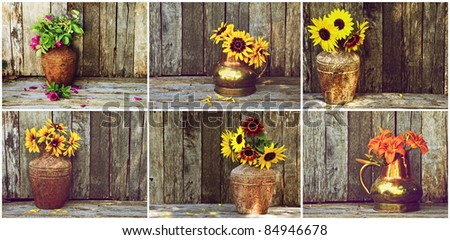 Flowers in vases on rustic wooden backdrops, collage.