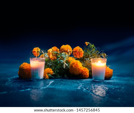 """Flowers of """"cempasuchil"""" or marigold used for mexican altars at day of the day"""