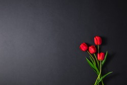 Flowers on a dark background for mourning and sorrow. Red tulips, a black wall of grief. Loss.