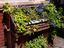 flowers on an old wooden piano