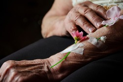 Flowers on old hands of grandmother close-up. Grandmother's wrinkled hands with flowers. Forgiveness concept. Love and care. Human kindness. Mercy. Old age. Soul beauty never gets old
