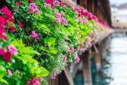 Flowers on The famous wooden Chapel Bridge (Kapellbrucke) in Lucerne city in Switzerland
