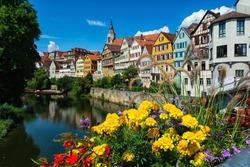 Flowers on the Neckar front in Tübingen in Germany