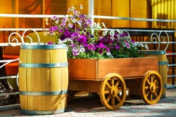 Flowers on the wagon. Decorative cart with flowers and barrels. Country style.