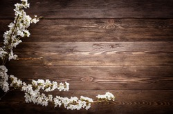 Flowers on wood texture background with copyspace