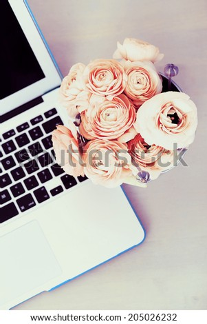 Flowers, rose. Beautiful, red bouquet in the pot