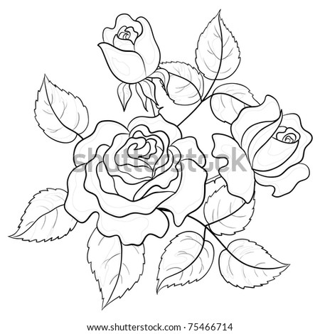 Flowers roses buds and leaves graphic monochrome contours