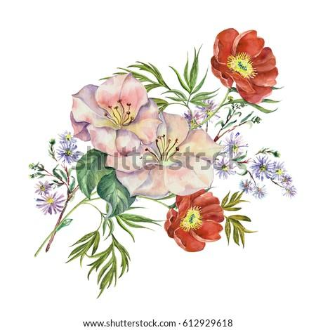 flowers spring watercolor.