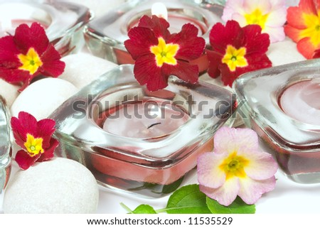 Flowers, stones and scented candles on white background