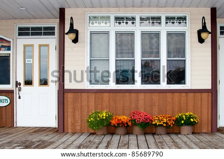 Flowers under the windows