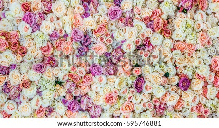 Shutterstock Flowers wall background with amazing red and white roses, Wedding decoration, hand made