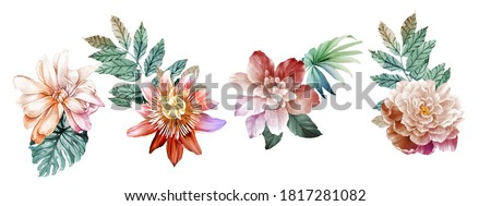 Flowers watercolor illustration.Big Set watercolor elements.
