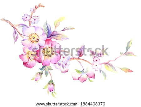 Flowers watercolor illustration. Manual composition.Design for cover, fabric, textile, wrapping paper .