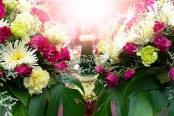 Flowers white and pink color for weddings and leave space for the text above.