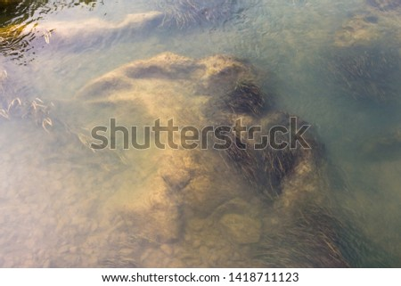 Flowing clear and transparent river surface can clearly see underwater rocks and water plants