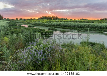 Flowing down from the Caucasus mountain range to the Kuban lowlands, the Adagum river becomes quiet and calm, but this calmness is deceptive #1429156103